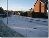 Snowy Bedlington 2008-11-22